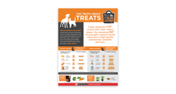 Truth about Treats PDF